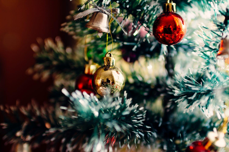 Offerta Natale e Capodanno in agriturismo nel Mugello Firenze