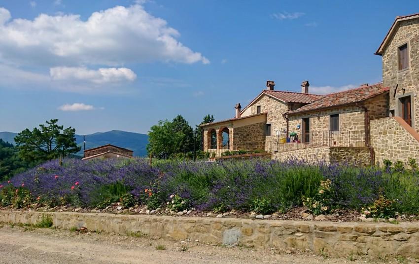 AGRITURISMO BORGO MACERETO - News & Offerte, Appartamenti Camere ...